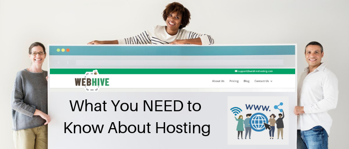 What You Need To Know About Web Hosting - Web Hive Blog
